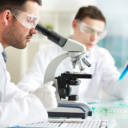 chicos-cientificos